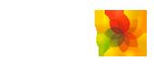 APN - Asociación de Profesionales del Neuquén